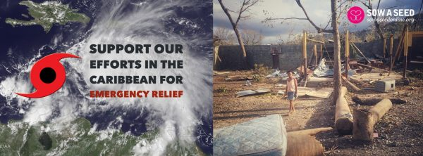 emergency-relief-wide-image-003